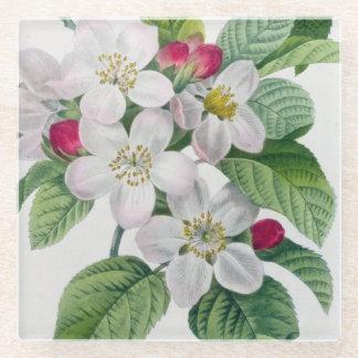 Blossom, from 'Les Choix des Plus Belles Glass Coaster