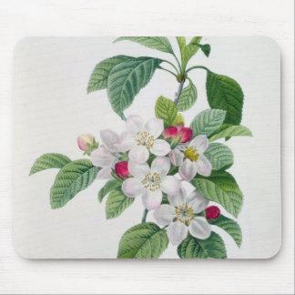 Blossom, from 'Les Choix des Plus Belles Mouse Pad