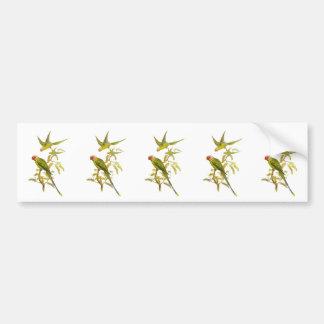Blossom-headed Parakeet Bumper Sticker