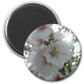 blossom fridge magnets