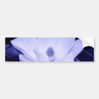 Blossom Magnolia Flower Bumper Sticker