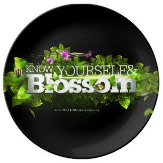 blossom plate porcelain plates