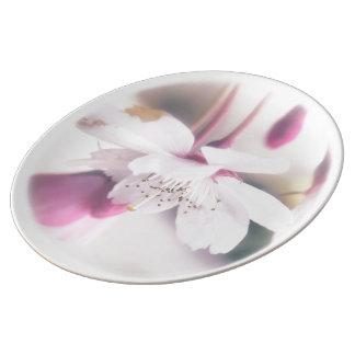 Blossom Porcelain Plate