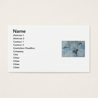 Blossom the Ragdoll Cat Business Card