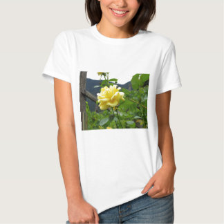 Blossom yellow rose on a mountain background t shirt