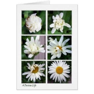 Blossomed Card