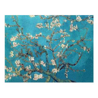 Blossoming Almond Tree Fine Art Postcard