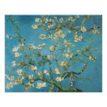 Blossoming Almond Tree  Vincent van Gogh Posters