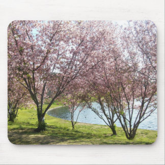 Blossoming Cherry Trees at Lake Mouse Pad