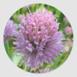 Blossoming Chives Stickers