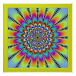 Blossoming Color Flowers Poster