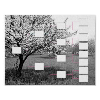 Blossoming Family Tree: 4 Generation Wall Chart Poster