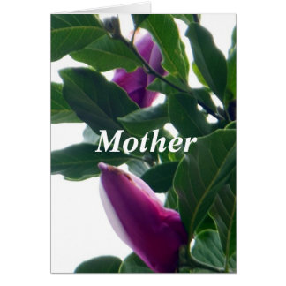 Blossoming Magnolias Mother's Day Card