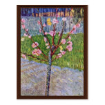 Blossoming Peach Tree By Vincent Van Gogh Post Cards