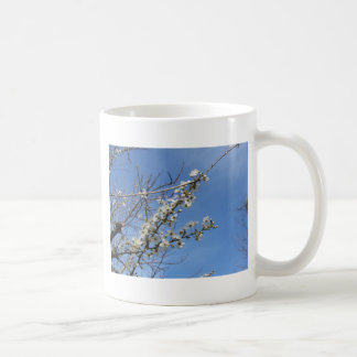 Blossoming plum against the sky . Tuscany, Italy Coffee Mug