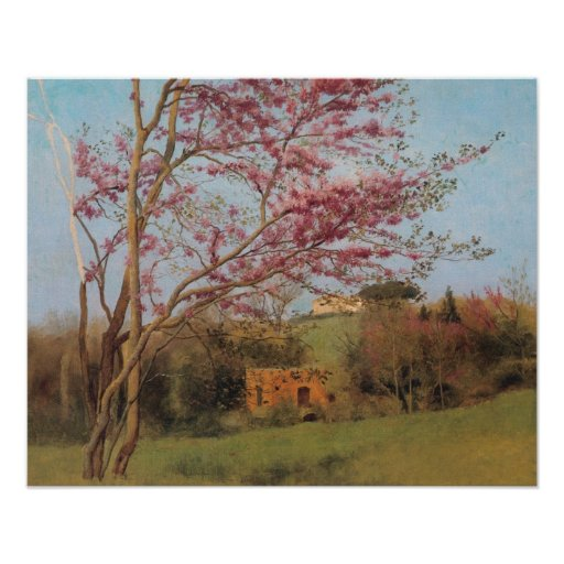 Blossoming red almond Tree Poster