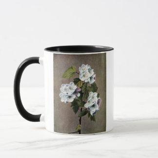 Blossoming Scarlet Haw Vintage Illustration Mug