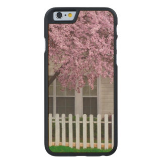 Blossoming Tree in the Suburbs Carved® Maple iPhone 6 Slim Case