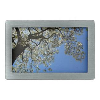 Blossoming White Magnolia tree against blue sky Rectangular Belt Buckle