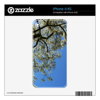 Blossoming White Magnolia tree against blue sky iPhone 4 Skin