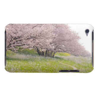 Blossoming Yoshino cherry trees in a field of iPod Touch Case-Mate Case