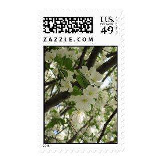 blossoms7 stamp