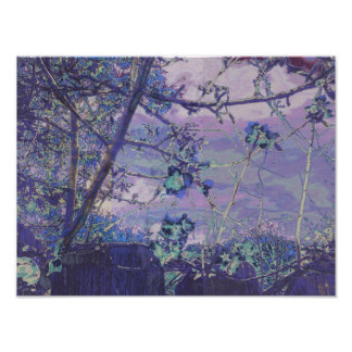 Blossoms Abstract Violet Poster