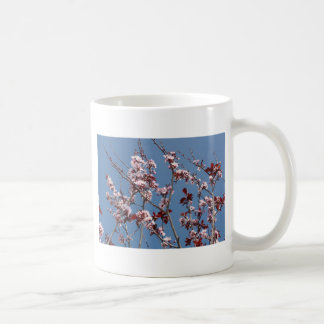 Blossoms against blue sky coffee mug