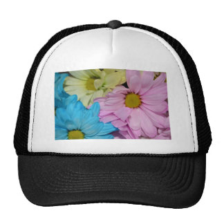 Blossoms Daisy Flowers Peace Love Nature Destiny Hats