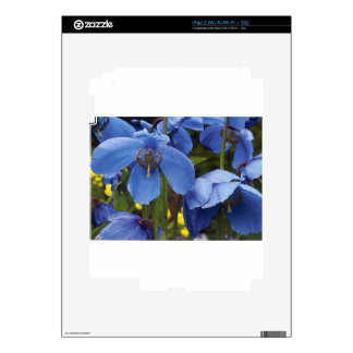 blossoms flora flowers petals garden vines decal for the iPad 2