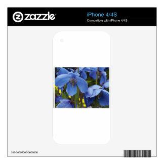 blossoms flora flowers petals garden vines decals for iPhone 4S