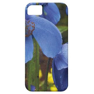 blossoms flora flowers petals garden vines iPhone SE/5/5s case