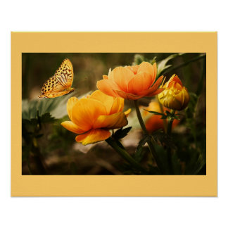 Blossoms Flowers Poster