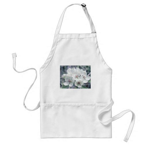 Blossoms in Morning Light Aprons