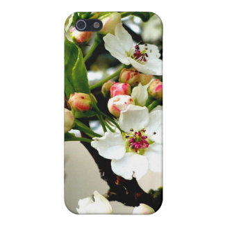 Blossoms in the cold iPhone 5 cases