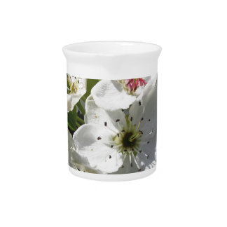 Blossoms of a pear tree in spring drink pitcher