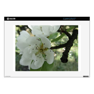 """Blossoms of a pear tree in spring . Tuscany, Italy Decal For 15"""" Laptop"""