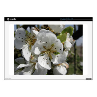 """Blossoms of a pear tree in spring . Tuscany, Italy Skin For 17"""" Laptop"""