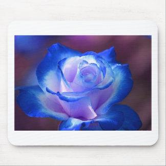 blossoms vines petal rose flowers flower blue love mouse pads