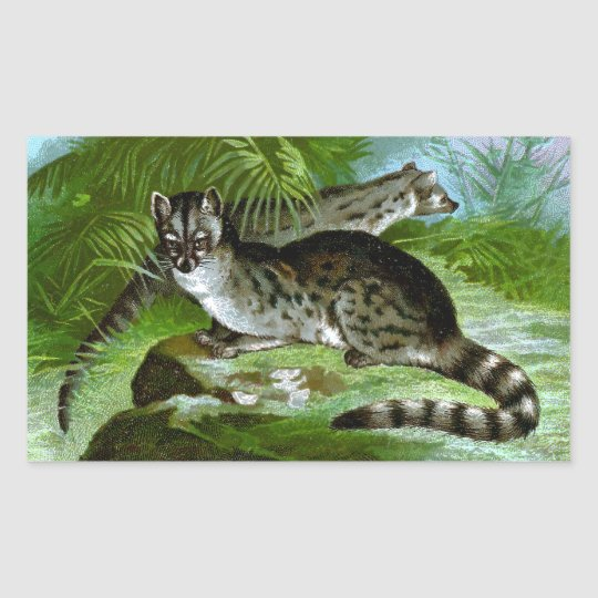 Blotched Genets Rectangular Sticker