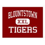 Blountstown - Tigers - High - Blountstown Florida Postcard