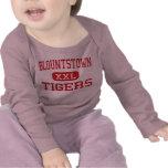 Blountstown - Tigers - High - Blountstown Florida T-shirts