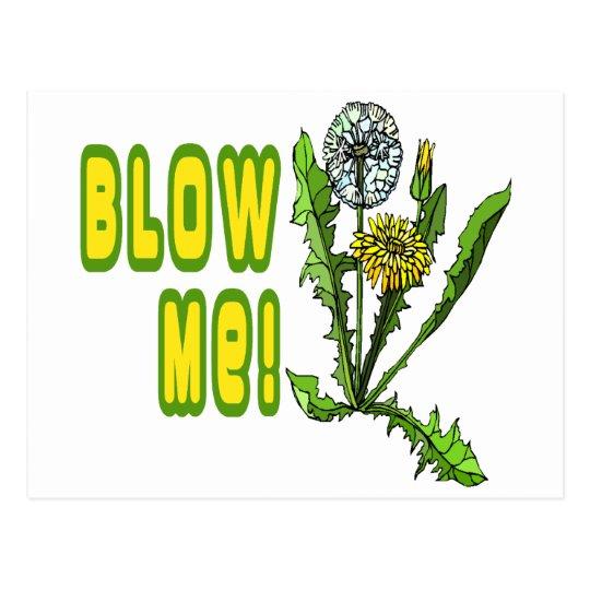Blow Me Dandelion Postcard