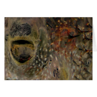 Blowfish Incident Card