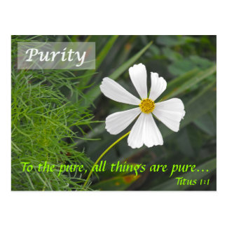 Blowin` in the Wind - Purity Postcard