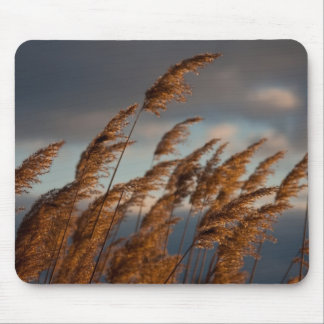 Blowing in the wind mousepad