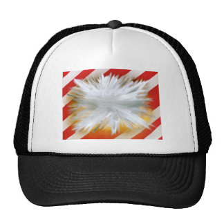 Blown up Painting Trucker Hat