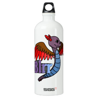Blrr (with name) aluminum water bottle