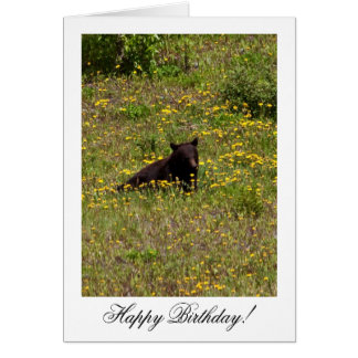 BLST Black Bear Snack Time Greeting Card