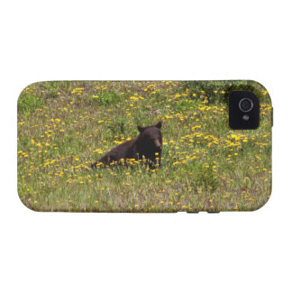 BLST Black Bear Snack Time Vibe iPhone 4 Cover